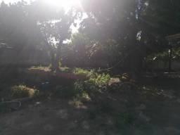 Terreno no vilage II