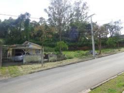 Terreno Centro de Colombo 650m2 ou 325m2