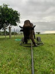 Vaca mecanica para laço