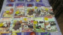 Kit culinaria 91 revista