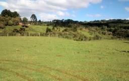 Fazenda Campo Belo do Sul, 480.400,00m²