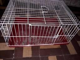 Gaiola média para roedores