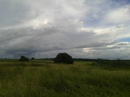 Fazenda com 280 ha, em são paulo do potengi, açude, barreiro, poço, lagoa, armazém