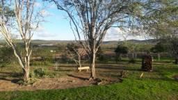 Vende-se Fazenda em Gravatá!!! (Ou terrenos com 2 ou mais hectares)