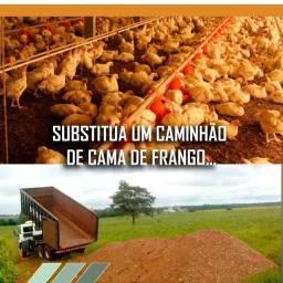 TURFA LIQUIDA SUBSTITUI ESTERCO DE GALINHA
