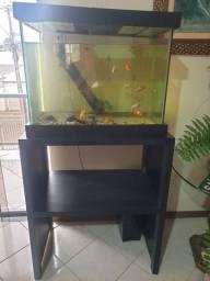 Título do anúncio: Aquario 120 litros