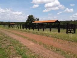 Fazenda em Bonito - MS - Aceita Permuta
