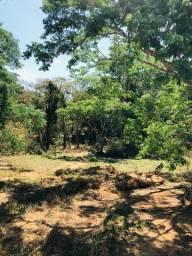 Lindas Chácaras de 20.000 m² com ótima terra para cultivos - R$17.900,00 + Parcelas