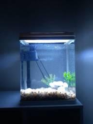 Aquário 27 litros de acrílico com LED embutida