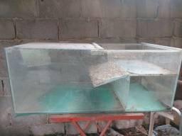 Aquaterrario