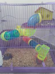 Gaiola master com 2 hamster