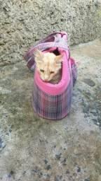 Bolsa de transporte para gato