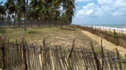 Sirinhaém-PE. Grandes áreas a beira mar para investidores- Super oportunidade!!