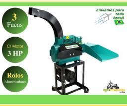 Promoção - Ensiladeira GTE-3000 com Motor 3cv Monofasico - Agromaquinas Online