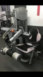 Vendo cadeira flexora profissional de academia, valor 6 mil