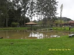 177C/Maravilhosa fazendinha/haras de 13 ha com estrutura espetacular e muita água