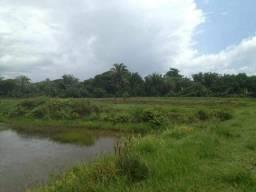 Vendo 45 hectares na beira do rio itapecuru