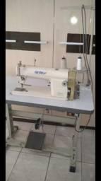Máquina de costura reta gemsy
