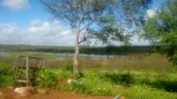 Fazenda com 96 há em são paulo do potengi as margens da barragem