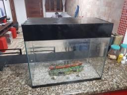 Vendo aquário 60 L, completo 150 reias