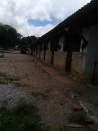 Fazenda com 60 há com casa, área de lazer, 12 baías, pátio de vaquejada, poço,