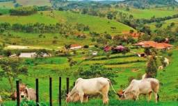 NS - Fazenda a venda  com maquinários - Paraná