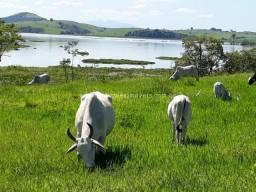 Fazenda 20 alq as margens da Lagoa de Jaturnaíba - Luxo demais!