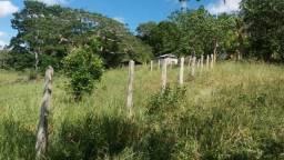 Cidade ilhéus região Japu, Sitio 72 hectares
