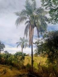 2,5 Hectares fazendinha a venda em Sete Lagoas - ideal para sítio, chácara, etc
