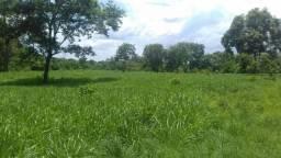 Excelente propriedade a margem da BR-153 entre Paraíso do Tocantins e Barrolândia