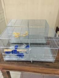 Gaiola criadeira de canário sem uso