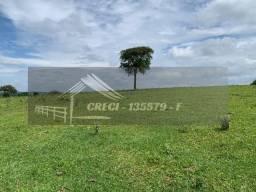 Fazenda com 234 hectares (Nogueira Imóveis Rurais)