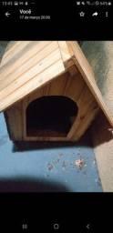 Casa cachorro p