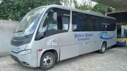 Micro Ônibus 2011