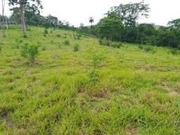 Chácara, com casa fazendinha 5 hectares para alugar região de BH em Sete Lagoas Br 040 MG