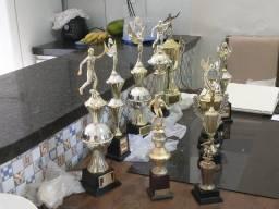 Vendo 10 Trofeis R$ 150,00  *