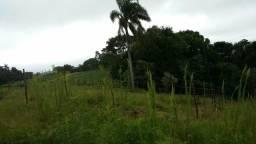 Terreno em Caucaia/Cotia - Estrada dos Grilos