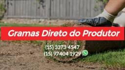 Gramas São Carlos pronta entrega a partir de 500 m² Xanxere Chapecó