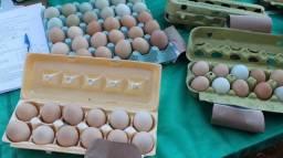 Ovos caipira duzia