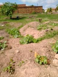 Terreno de esquina de em Castanhal