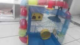 Vendo gaiola de hamster para hoje 100
