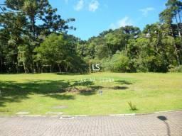 Terreno à venda, 1975 m² por R$ 1.700.000,00 - Centro - Canela/RS