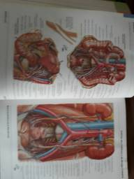 Livros anatomia