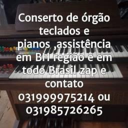 Órgãos, teclados pianos músicas