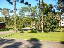 Terreno à venda, 739 m² por R$ 800.000,00 - Centro - Canela/RS