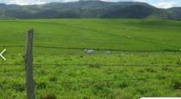 C.C Imóvel Rural