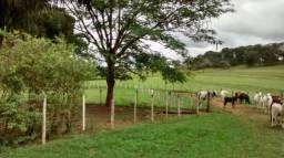 Sítio à venda em Area rural de mirassol, Mirassol cod:V4382