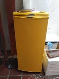 Freezer Electrolux F170/H160 vertical 220v