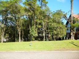 Terreno à venda, 707 m² por R$ 750.000,00 - Altos Pinheiros - Canela/RS
