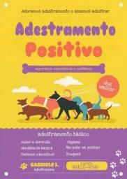 Título do anúncio: Adestramento/dog walker